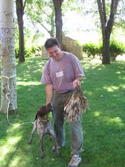 La abundancia de codornices pone a cien a los cazadores